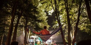 electric forest hammock swag